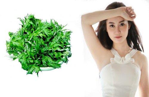 Cách chữa trị mồ hôi nách với ngải cứu