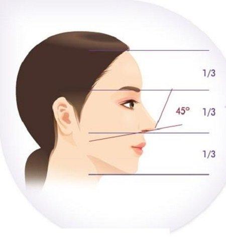 Tỷ lệ 1/3 tỷ lệ vàng cho một chiếc mũi đẹp