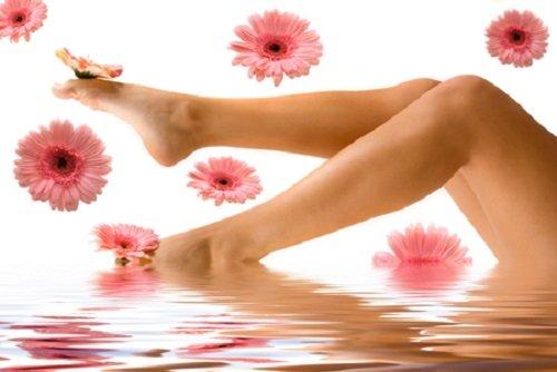 Triệt lông chân với trà hoa cúc