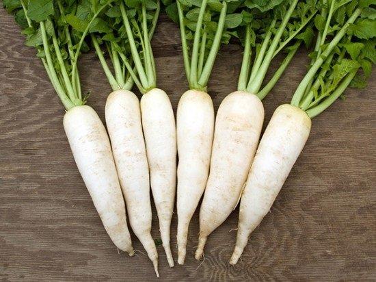 Củ cải trắng chữa bệnh hôi nách nhanh chóng hiệu quả