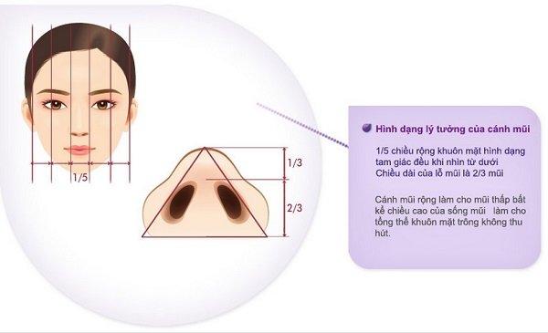 Mức độ an toàn của cắt cánh mũi